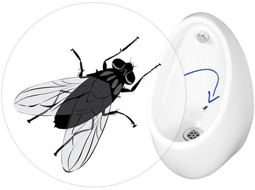Example of a Urinal Fly